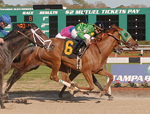 Familiar Foes Square Off in Florida Oaks