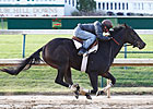 Rocket Twentyone Preps for Juvenile Fillies