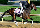 Room Service Ships West for American Oaks