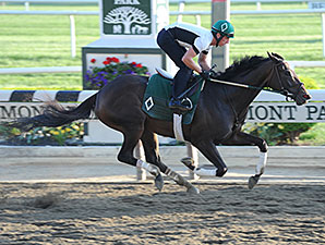 Royal Delta Breezes at Belmont Park