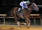 Popular Russell Road Gets 20th Career Victory