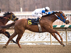 $2 Million on Line in WV Breeders Classics