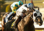 Sahara Sky Faces Tough Field in San Carlos