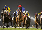 Game Sajjhaa Gets Up Late in Jebel Hatta