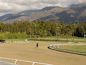 Santa Anita Examines Racing Surface