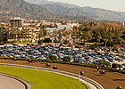 Santa Anita to Replace Dirt Track in July