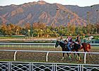 Santa Anita Earns Safety Re-Accreditation
