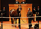 Sarah Lynx, She's a Tiger Top $2M at F-T Sale