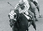 Secretariat Podcast Series: The Gotham