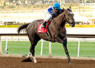 Seduire Scampers to Easy Santa Ynez Victory