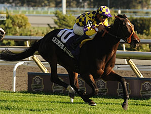 Filly Serious Attitude Beats Boys in Nearctic