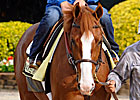 Shake Shack Along for Ride With Shackleford