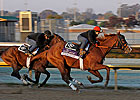 Romans: Shackleford, Dullahan Ready for BC