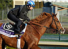 Preakness Winner Shackleford Going for Carter