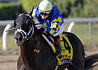 Shanghai Bobby, Violence Ready for Gulfstream