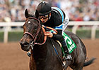 Bullet Work at Golden Gate for Shared Belief