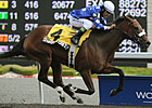 Duchess: Sharp Secretary in First Stakes Win