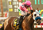 She's a Tiger Shows Stripes in Debutante Win