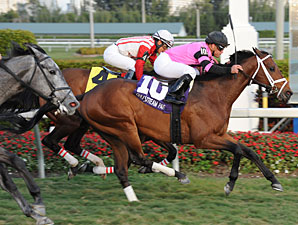 Gulfstream Turf 'Cap to Test Silver Medallion