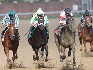 Sky Girl Soars to Dogwood Victory