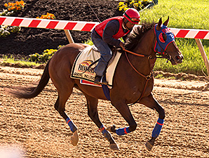 Social Inclusion, Bayern Prep for Preakness