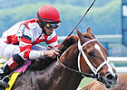 Solar Flare Looks to Shine in Stuyvesant