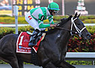 Soldat Makes Return on Turf
