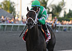 Impressive Soldat Wins Comeback Race on Turf