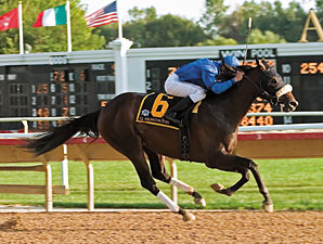 Sorcerer's Stone Sires First Winner