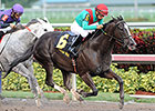 Speechify Takes Mr. Prospector at Gulfstream