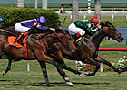 Favored Sporting Art Wins Palm Beach S.
