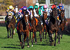 O'Briens Team Up to Win Breeders' Cup Turf