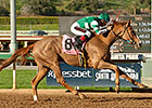 Stellar Wind Sails to Santa Ysabel Victory