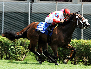 Edgewood: Stephanie's Kitten Sets Stakes Mark