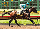 Story to Tell, La Grange Win Juvenile Stakes