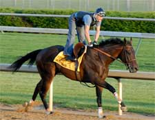 Street Sense Favored in Early Derby Wagering