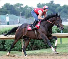 Street Sense Works Five Furlongs at Churchill