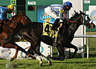 Rivals Battle in Col. Bradley Handicap