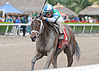 Sweet Whiskey Takes Rail to Old Hat Win