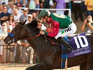 Tamarando's Futurity Lifts Bertrando's Legacy