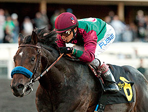 Hollendorfer Uses Option in El Camino Real