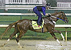 Kentucky Derby News Update for April 28, 2014
