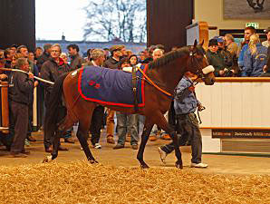 European Mark Smashed Again at Tattersalls