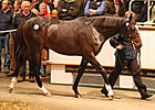 Tattersalls Book 1 Ends With a Galileo Blast