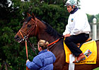 Travers Winner Ten Most Wanted Dies
