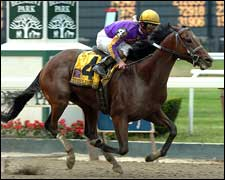 Teuflesberg Takes On Elders in Turfway's Fall Championship