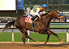 The Factor Cruises in Malibu Stakes