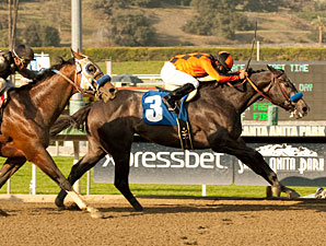 The Factor Refuses to Fold in San Carlos