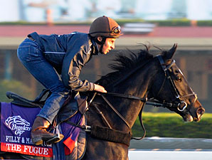 The Fugue, Other Euros Put in BC Gallops
