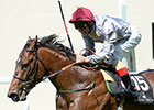 The Wow Signal Injured, Retired to Stud